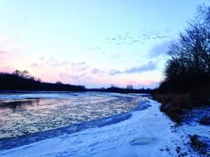 Grand River. Aldo Zhang.